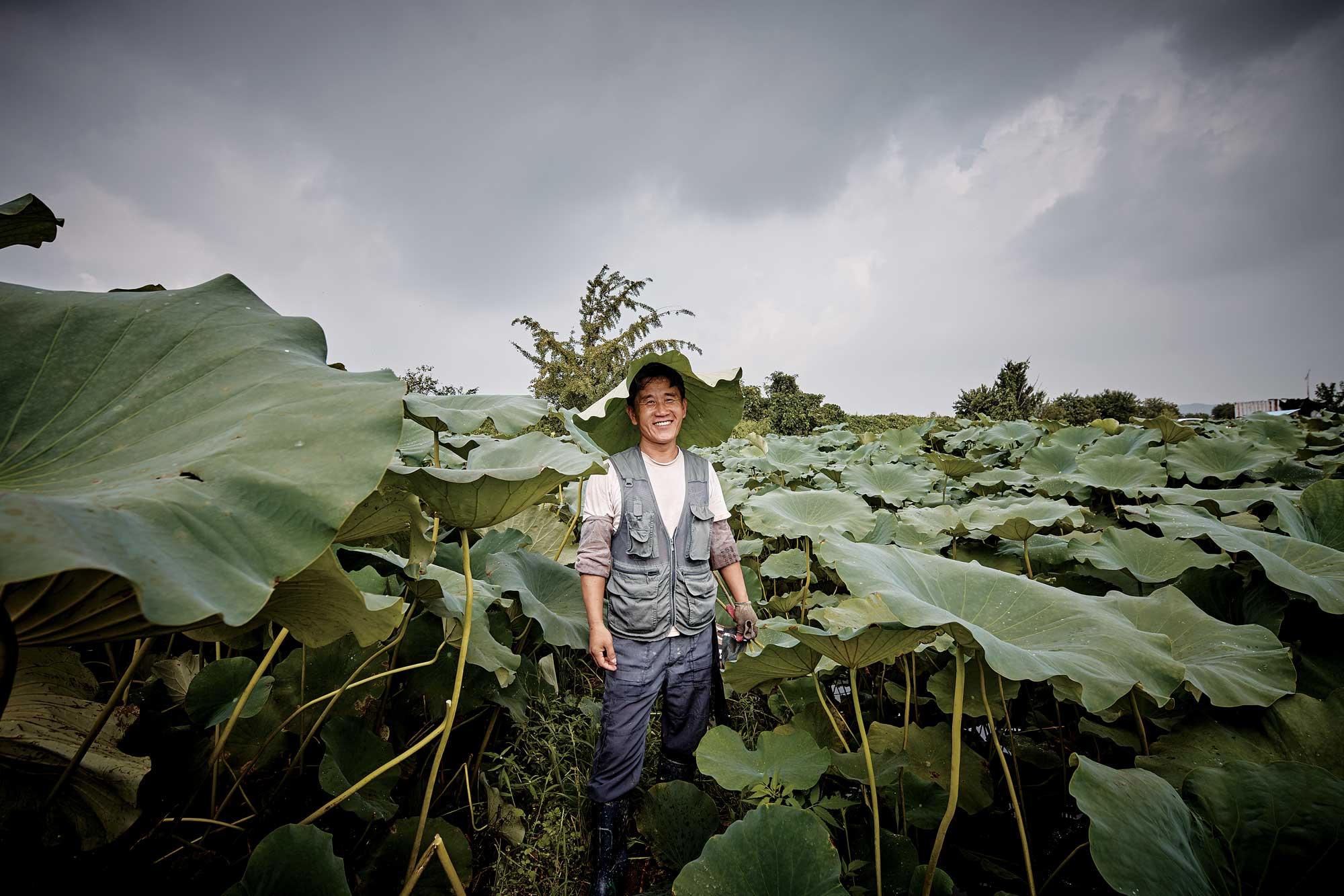 김동우 대표가 걷는 곳이 길이 된다. 제초제를 사용하지 않아 풀로 우거진 연밭 ©양성모