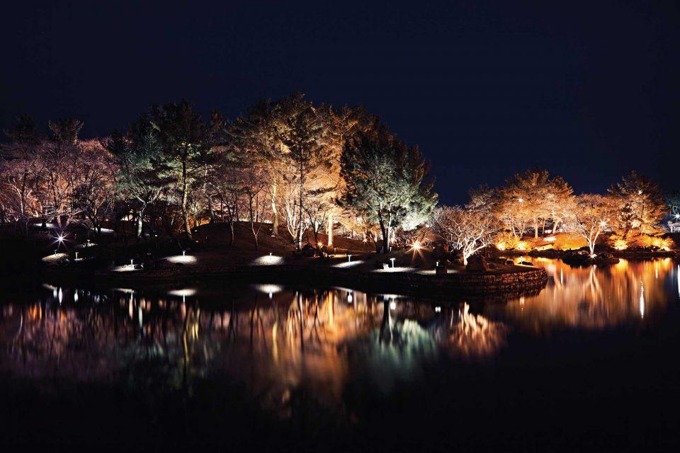 야경이 내린 동궁과 월지의 풍경. © 김재욱