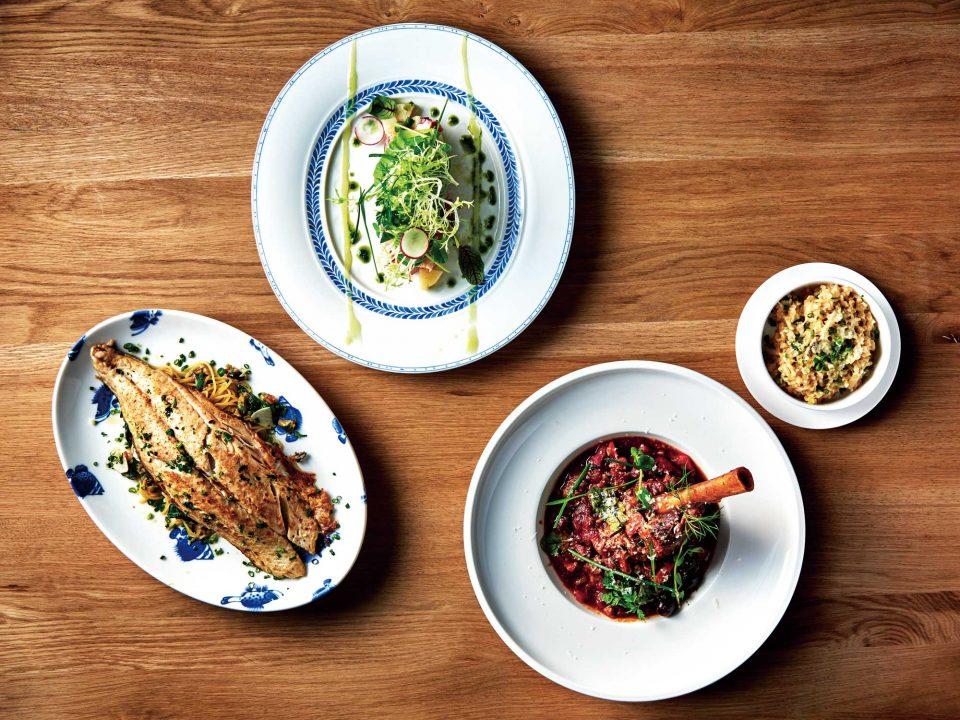 속초산 피문어 샐러드, 스패니시 삼치파스타 시가, 어린 양 사태찜과 포르치니 버섯 리조토