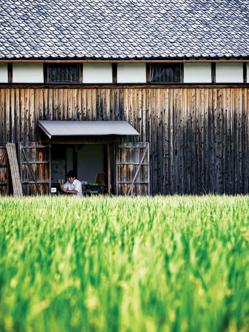 논 한가운데 있는 아야우타제면에서는 논밭을 바라보며 우동을 먹을 수 있다.