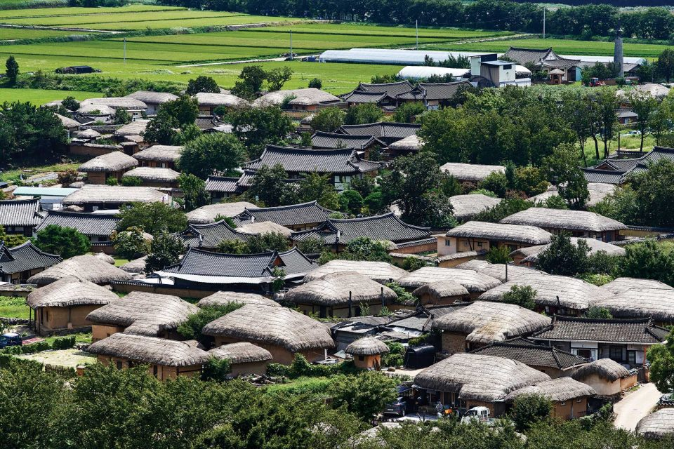 부용대에 올라 하회마을을 내려다본 풍경. 초가지붕과 기와지붕이 옹기종기 모여 있는 모습이 흥미로웠다.