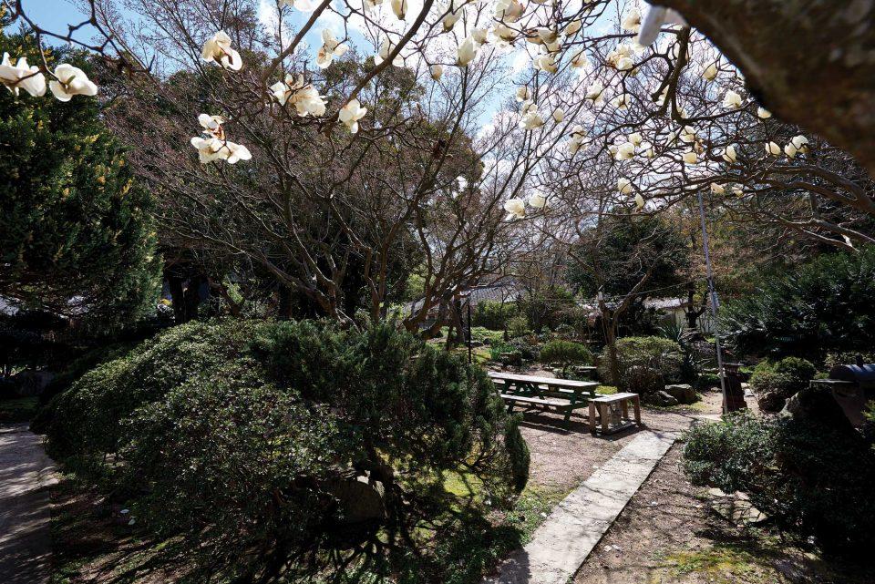 해창주조장은 90년 전 일본식 정원의 모습을 고스란히 간직하고 있다.