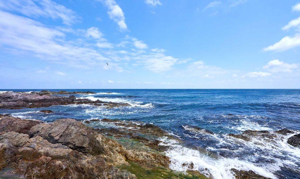 해안도로 드라이브 중 만난 푸른 동해 바다. 마치 바다에 뼈라도 있는 듯 사납게 몰아쳤다.